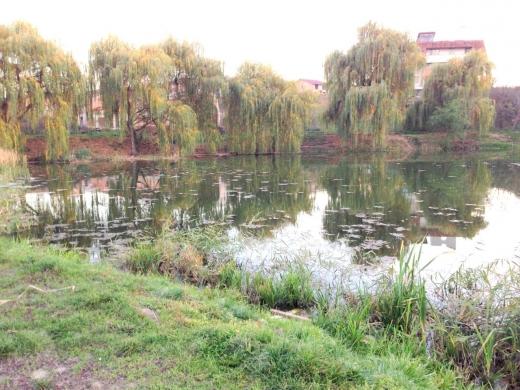 Lacul 3 Gheorgheni