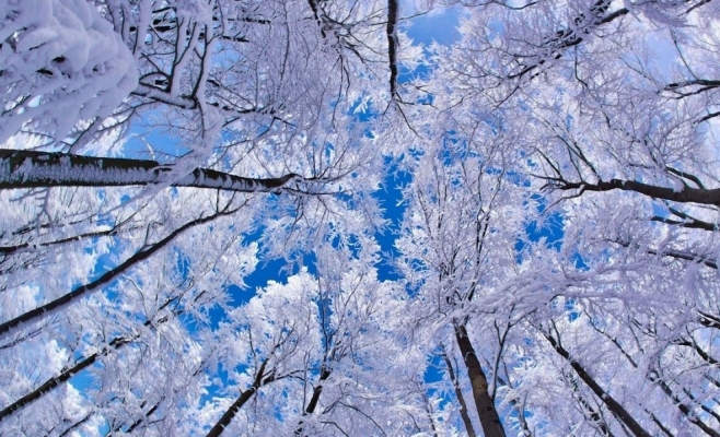 Vezi cum va fi vremea la Cluj de Crăciun!
