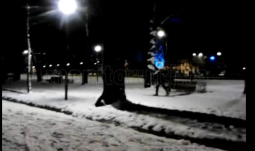 VIDEO: Schi pe aleile din Parcul Mare din Cluj-Napoca