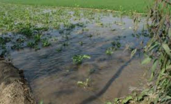 COD PORTOCALIU de inundaţii în nouă judeţe. Avertizarea, valabilă până luni seara