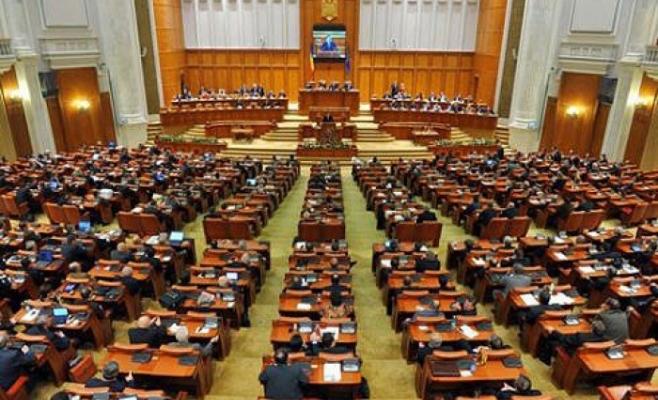 """O nelămurire a Steluţei Cătăniciu va stârni un """"cutremur"""" în Parlament"""