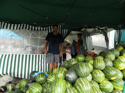 Portret de familie: Sorin Dună locuieşte cu ai lui câte trei luni în corturi improvizate, pentru a vinde lubeniţă în Cluj-Napoca