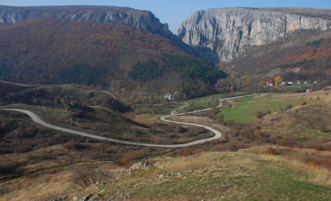 O treime din plantele din România se găsesc la Cheile Turzii, iar cea mai mare pasăre răpitoare din țară își face veacul prin zonă.