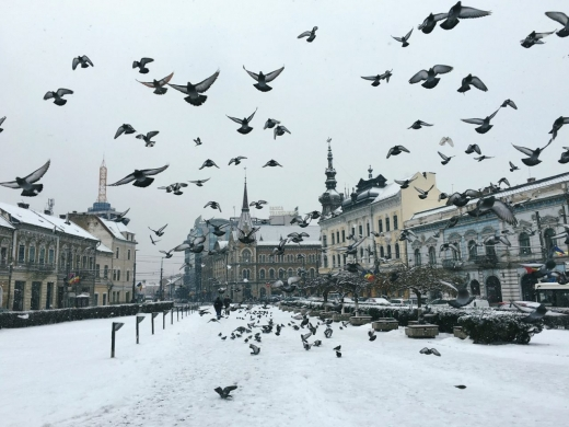 foto Mihail Onaca