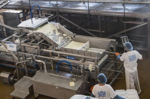 Producătorul brandului Napolact investește 1,3 milioane de euro într-o nouă linie la fabrica din Cluj
