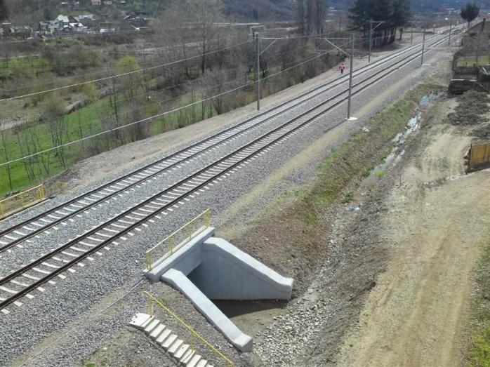 Unul dintre vagoanele trenului Bucureşti-Istanbul a DERAIAT