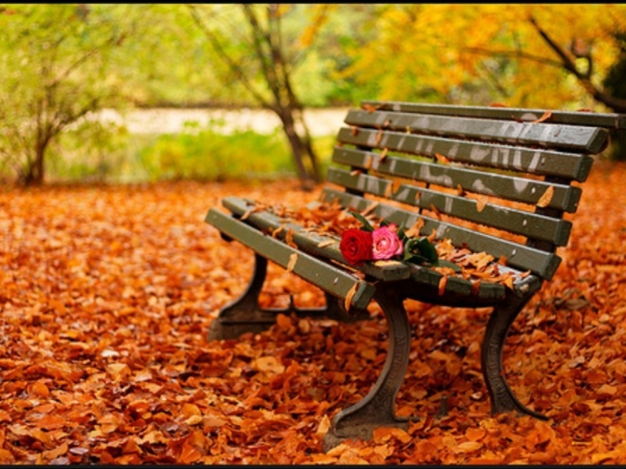 Află cum va fi vremea în Transilvania până pe 20 octombrie