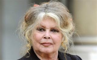 Fosta actriţă franceză Brigitte Bardot. Sursă foto: www.telegraph.co.uk