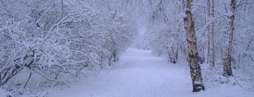 Ce fel de iarnă vom avea?