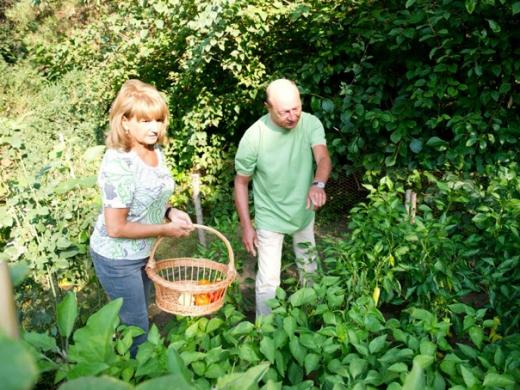 Imagini inedite cu președintele Traian Băsescu și grădina sa de legume
