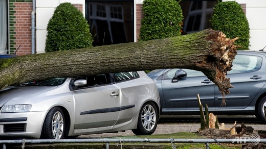 Furtuna puternică din nordul Europei provoacă primele victime în Olanda şi Marea Britanie