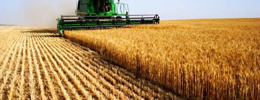 Subvenţii de peste 2 miliarde de lei pentru producătorii agricoli, în 2014