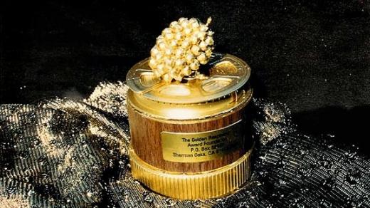 Zmeura de Aur 2014: Ce pelicule se regăsesc pe lista celor mai proaste filme