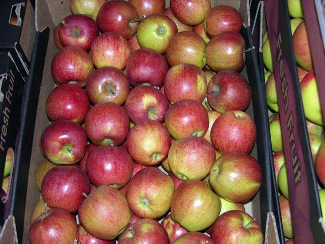 180 kg de mere, confiscate pe polițiștii clujeni