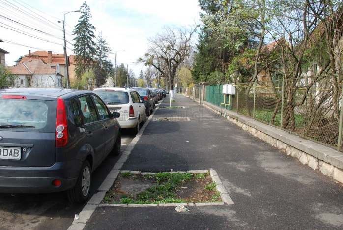 Copaci taiati pe strada Iuliu Hossu