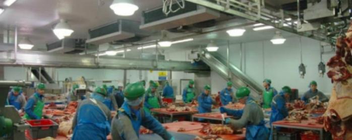Un abator de 9,5 milioane euro se va construi în Iclod