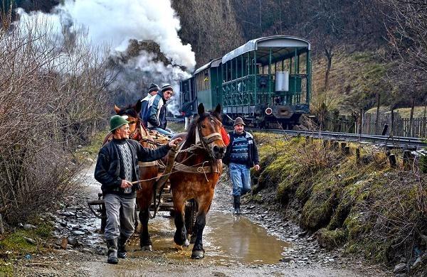 Vișeul de Sus, Maramureș. Oameni alături de o caruță trasă de doi cai. Sursă foto: CNN.ro