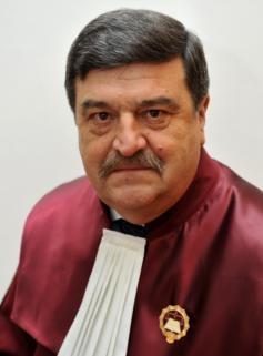 Judecătorul Curţii Constituţionale a Romaniei Toni Greblă. Sursa foto: www.ccr.ro