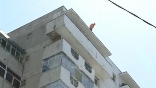 sursa foto romaniatv.net