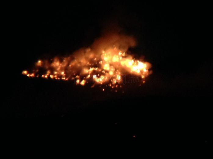 Incendiu puternic la groapa de gunoia Primariei