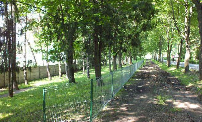 Primăria construieşte un spaţiu de joacă pentru câini la doi ani