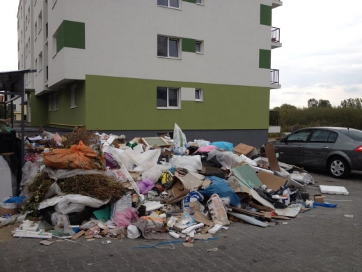 Mormane de gunoaie în cartierul Între Lacuri
