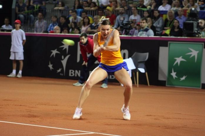 Harber, într-unul din meciurile din Fed Cup de la Cluj