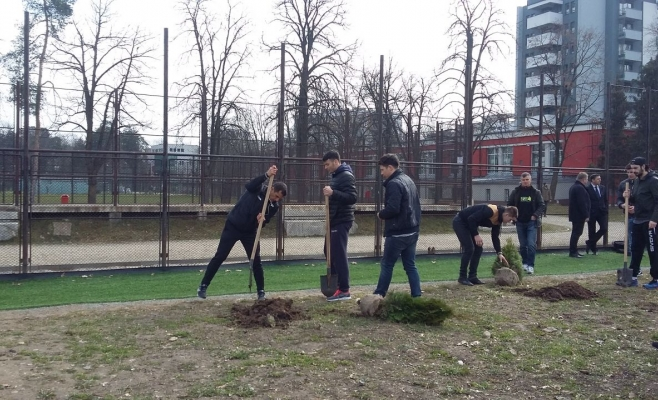 """Studenţii de la UBB plantează puieţi în Parcul """"Iuliu Haţieganu"""""""