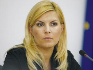 DOSARUL privind campania electorală din 2009. Elena Udrea, Ioana Băsescu şi Dan Andronic, trimişi în judecată