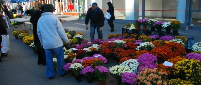 De unde puteţi cumpăra flori şi lumânări cu ocazia zilei de 1 noiembrie