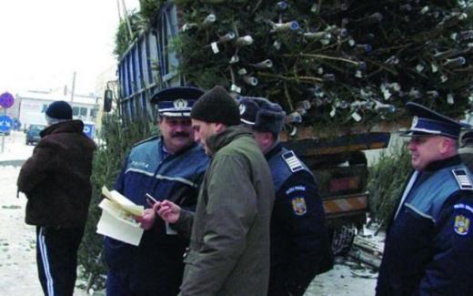 sursă foto: ziarulcomod.ro