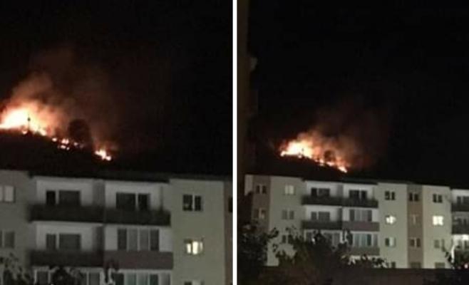 Incendiu in padurea Hoia. Foto: Radio Cluj