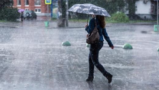 Cod galbene de ploi în județul Cluj