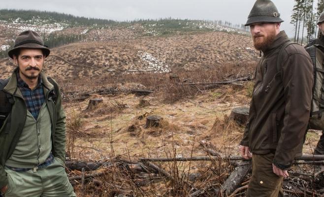 """Defrișările din Apuseni, subiect de presă în Austria: """"260 de mil. de copaci au fost tăiați!"""", sursă foto: Addendum, Austria"""