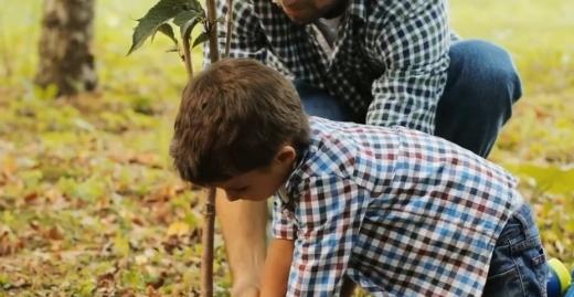 Angajații Zipper au participat la reîmpădurirea zonei Dezmir