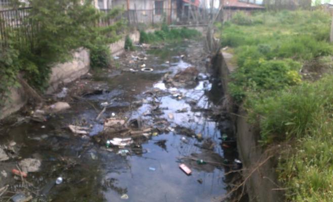 """Clujenii vor să salveze Canalul Morii: """"Sunt atâtea propuneri frumoase din partea arhitecților, studenților!"""""""