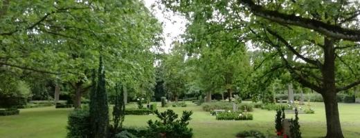 """Cimitire parcuri la Cluj-Napoca? """"Să devină spații de reculegere, nu locuri de care ne temem!"""""""