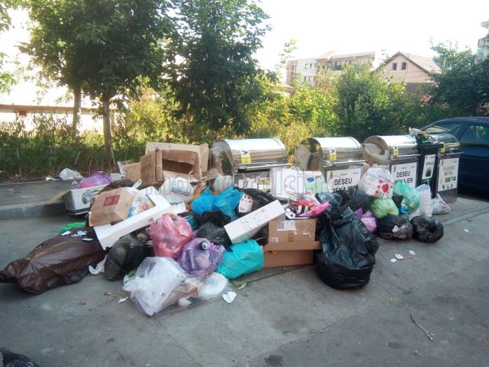 """Eșecul colectării selective poate duce la o """"mini-criză"""" a gunoaielor în Cluj-Napoca: """"Am început procesele verbale de constatare pentru rezilierea contractelor!"""""""