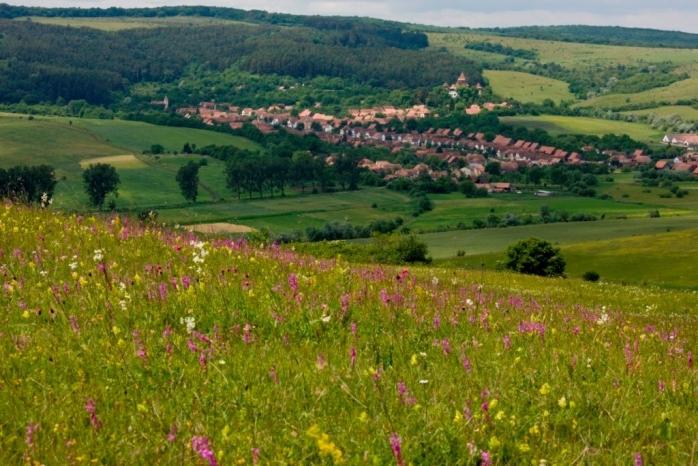 Votează pentru peisajele din Transilvania! Finanțare pentru revigorarea unei zone superbe