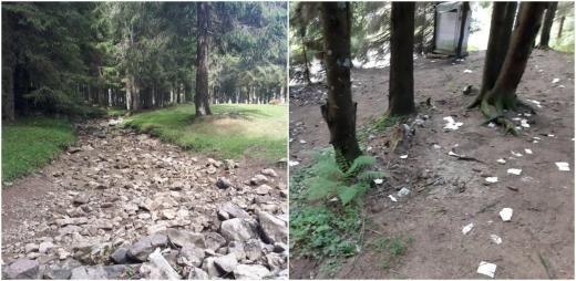 """Mizerie, râu secat, brazi arși în zona turistică Padiș: """"Nu e nevoie ca locul să devină un bâlci infect!"""""""