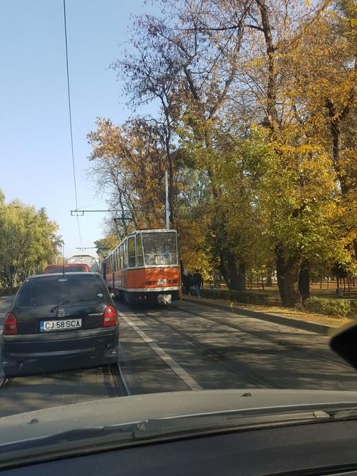 Sursă foto: Horațiu Iuga