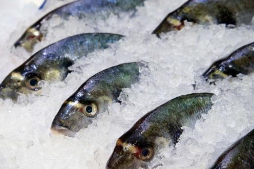 Raioanele de produse congelate din pește de la Selgros ar putea fi închise. Nu respectă standardele!