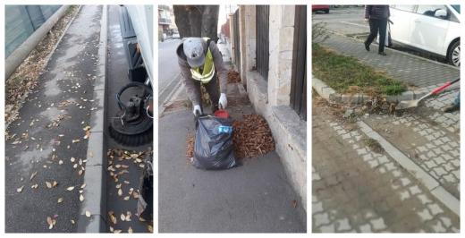 Șulea se laudă cu igienizarea de toamnă și pune vina pe localnici pentru lipsa coșurilor de gunoi, sursă foto: colaj Facebook Horia Șulea
