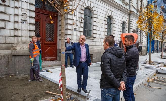 """S-au plantat primii arbori pe strada Regele Ferdinand, lucrările sunt """"în grafic și continuă"""", sursă foto: Facebook Emil Boc"""