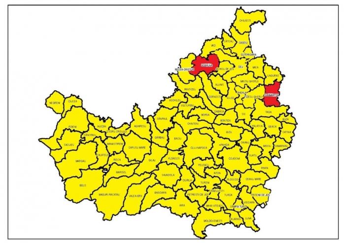 Răscoala de la Bobâlna! Ultimele fiefuri PSD din Cluj. După Diaconu, Sânmărtin a ales Dăncilă