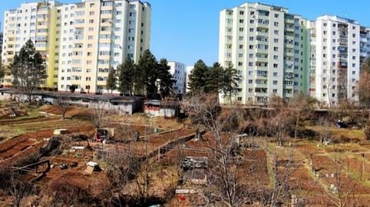"""Revine grădinăritul """"la bloc"""" în Cluj-Napoca? , sursă foto: Facebook Adrian Dohotaru"""