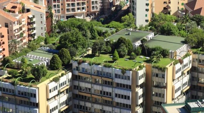"""Acoperișuri verzi în Cluj? Blocurile comuniste, supuse """"renovării ecologice"""", ar deveni grădini, sursă foto: Bugetare participativă 2019"""