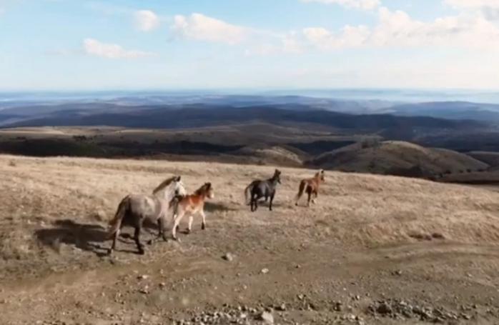 Imagini FABULOASE surprinse în Munții Apuseni, publicate de alpinistul clujean Vlad Căpușan, sursă foto: captură foto Facebook Vlad Căpușan