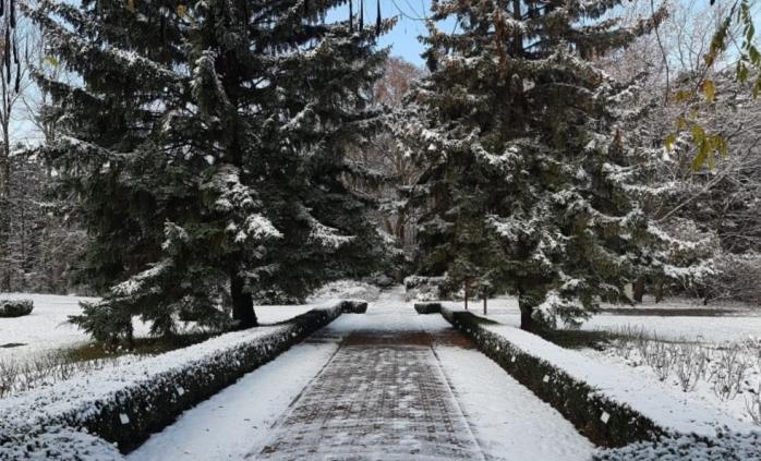 Accesul în Parcul Babeș și Grădina Botanică din Cluj-Napoca, suspendat de coronavirus