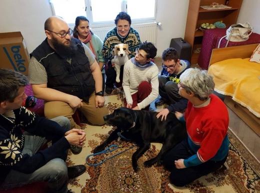 Ajutor la telefon pentru părinții clujeni și stăpânii de animale / Foto: Facebook Dog Assist
